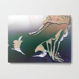 0009 (2015 F12 1) Metal Print