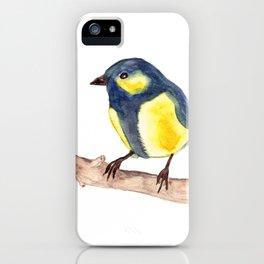 Blue Pinzon iPhone Case