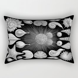 Sea Shells and Starfish (Thalamophora) by Ernst Haeckel Rectangular Pillow