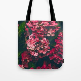 Christmas Hydrangea Red Floral Green Leaves Supple Flowers In The Garden Tote Bag