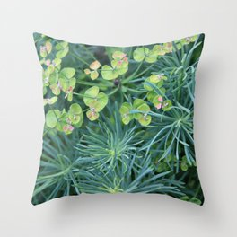 "Euphorbia Cyparissias ""Fens Ruby"" Throw Pillow"