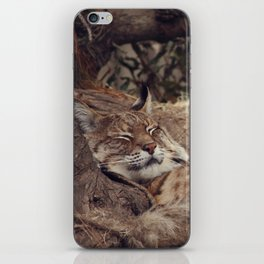 bobcat iPhone Skin