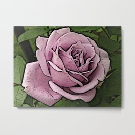 A Pink Rose Metal Print