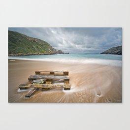 Wood in the beach Canvas Print