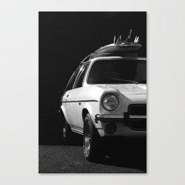 WHITE KNIGHT Canvas Print