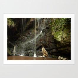 Eagle Owl and Waterfall. Art Print