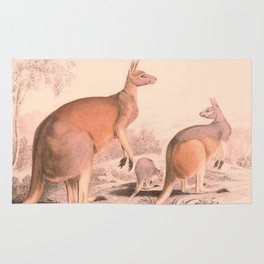 Vintage Kangaroo Family Illustration (1849) Rug