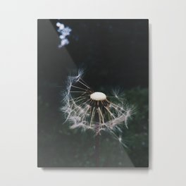 I always called these blowers as a child Metal Print
