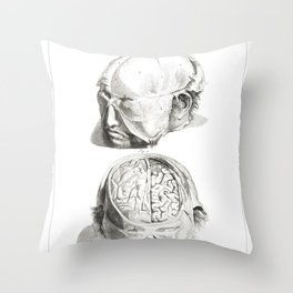 Human Anatomy Art Print HEAD BRAIN SKULL Vintage Anatomy, doctor medical art, Antique Book Plate, Me Throw Pillow