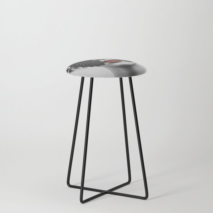 BLACK BUTTERFLY Counter Stool