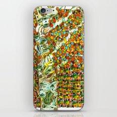 Autumn Aspen iPhone & iPod Skin