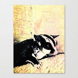 In Memory of Peanut Canvas Print