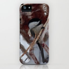 Chickadee On A Frozen Deer Ribcage iPhone Case