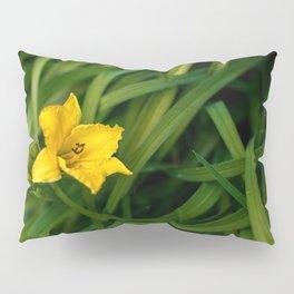 Day Pillow Sham
