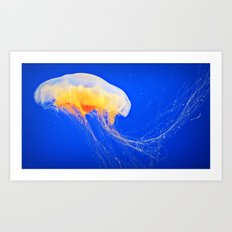 Happy Jelly Art Print