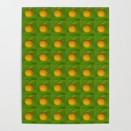 Lemon Lime All The Time Poster