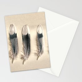 Dove Feathers Still Life Modern Cottage Modern Country Matted Picture USA A129 Stationery Cards