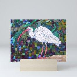 Florida White Ibis Mini Art Print