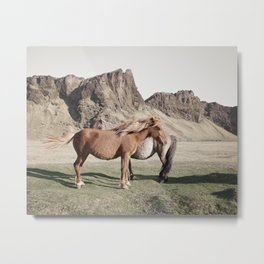 Rustic Horse Photograph in Mountains Metal Print