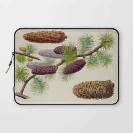 Pine Cone Larix Griffithii Vintage Botanical Floral Flower Plant Scientific Illustration Laptop Sleeve