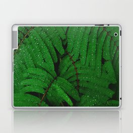 Layers Of Wet Green Fern Leaves Patterns In Nature Laptop & iPad Skin