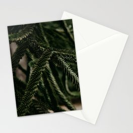 Cactus lover  Stationery Cards