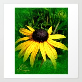 Black Eyed Susan Painted Photo Art Print