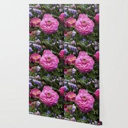 Spring Rosy Ranunculus And Primrose With Violet Violas Wallpaper
