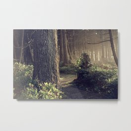 The Forest Whispers Antigue Metal Print