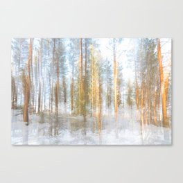 Transparent Canvas Print