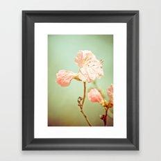 Aprils' Pink blossom Framed Art Print