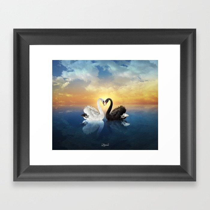 Cisnes Love Framed Art Print
