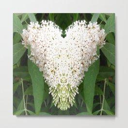Buddleia Heart Metal Print