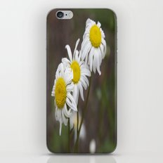 More flowers iPhone Skin
