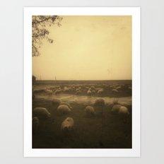 | sheep at dusk | Art Print