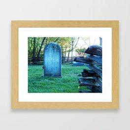 Historic Blenheim Framed Art Print
