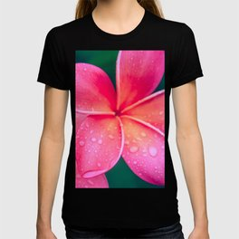Aloha Hawaii Kalama O Nei Pink Tropical Plumeria T-shirt