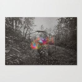 Paulo Coelho Inspired Image Canvas Print