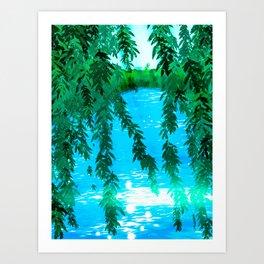 Willow Lake Art Print