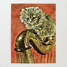 Music was my first love - a cat and harp Poster