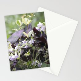 Longwood Gardens Autumn Series 234 Stationery Cards