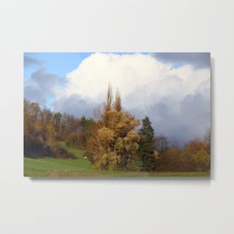 German Landscape  Metal Print