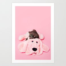 Gray Cat On Pink Art Print