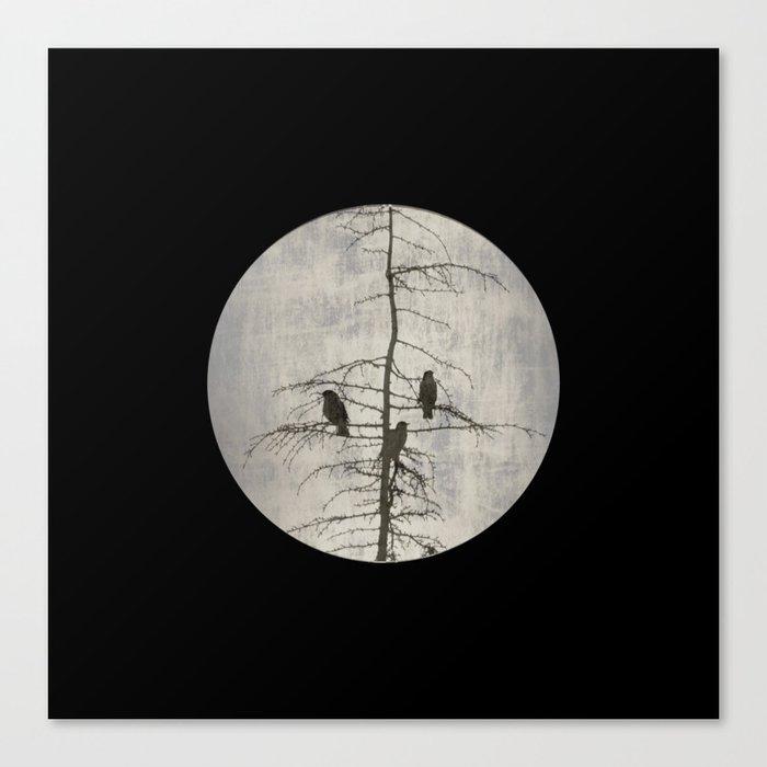 A Full Moon Night Canvas Print