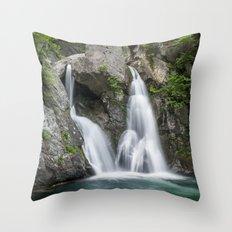 Bash Bish Falls Throw Pillow