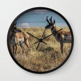 Prarie Pronghorn Wall Clock