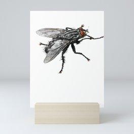 Pretty Giant black Fly with Bristles Mini Art Print
