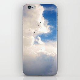 Golden Flight iPhone Skin