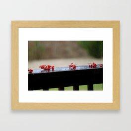 Berrys Framed Art Print