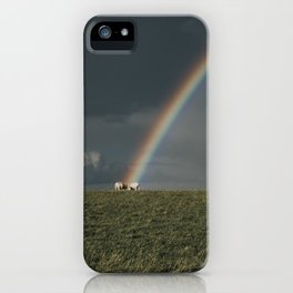 Rainbow II  - Landscape and Nature Photography iPhone Case